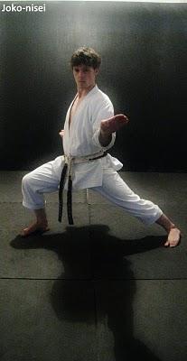 2-JOKO_NISEI_KATA-Andre_Bertel