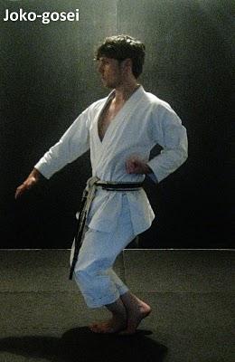 5-JOKO_GOSEI_KATA-Andre_Bertel