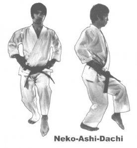 Kanazawa - nekoashi-dachi