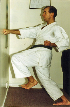 Push from the hips for the 'FEEL' of the back leg in zenkutsu